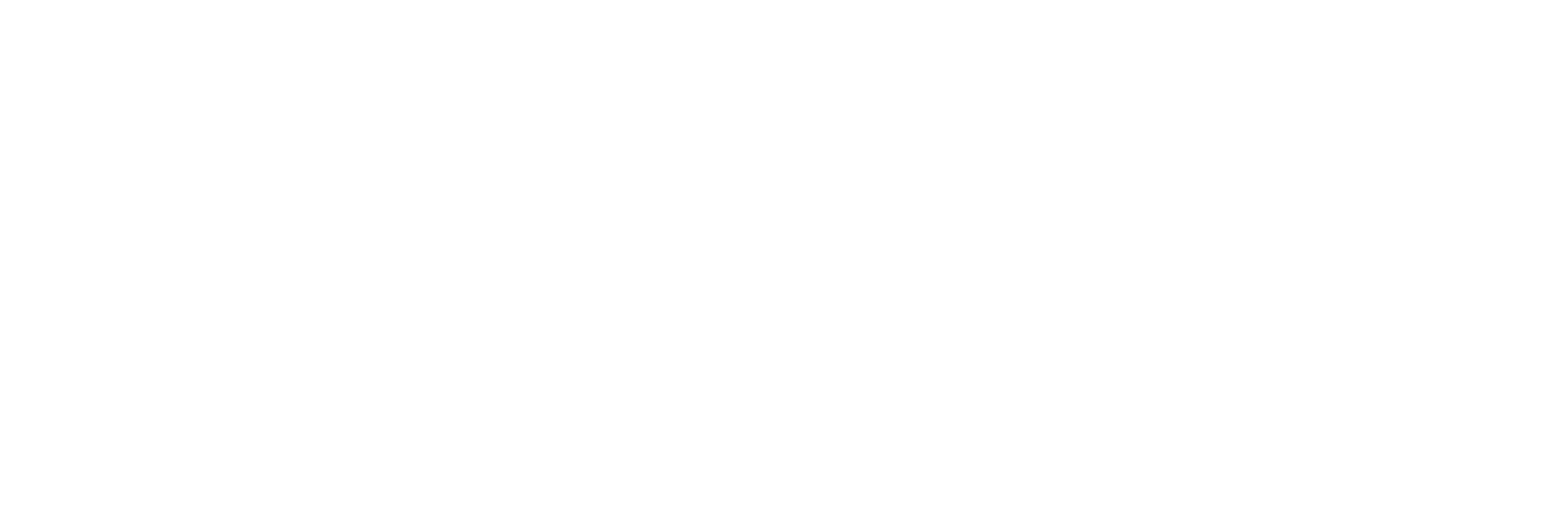 Executive Jane Logo